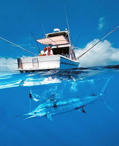 Глубоководная рыбалка на Маврикии